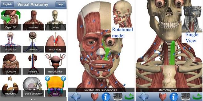 تعرف إلى تطبيق تشريح جسم الإنسان Visual Anatomy - زووم على